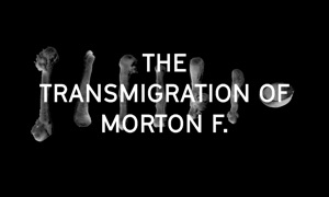 Morton F.