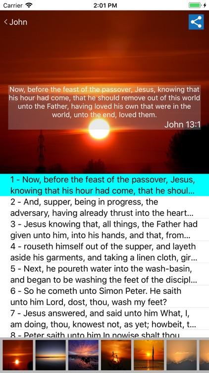 American King James Bible screenshot-7