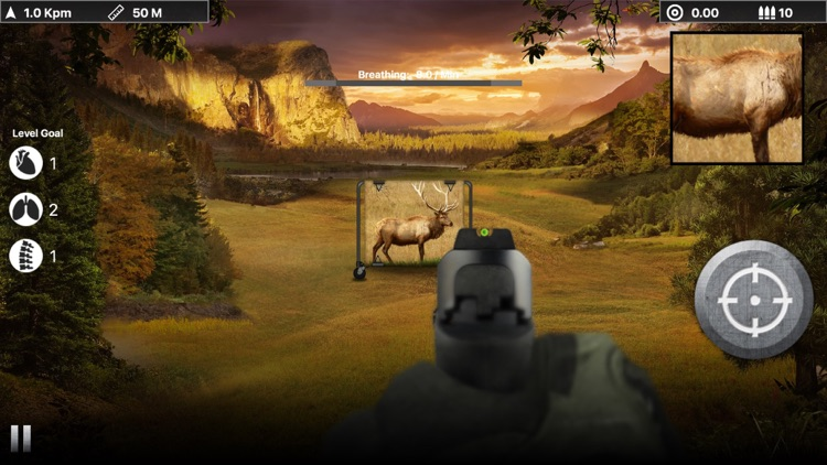 Deer Target Shooting : Pro screenshot-3