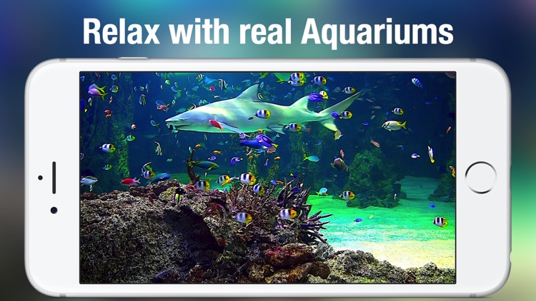 Aquarium Live HD screenshot-2