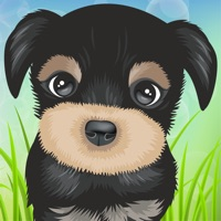 Codes for Cute Puppies Puzzle Hack
