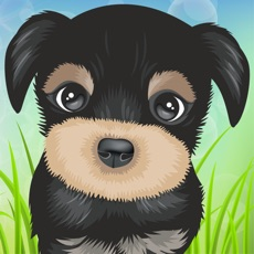 Activities of Cute Puppies Puzzle