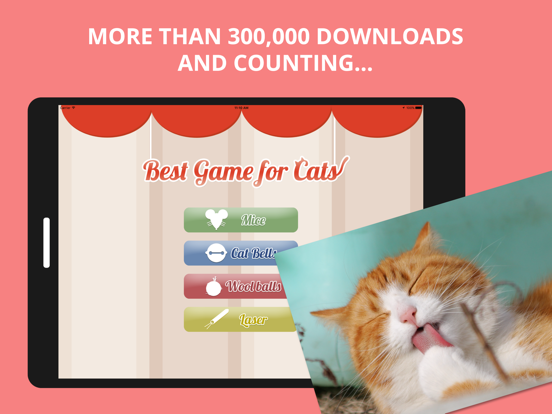 Best Game for Cats screenshot