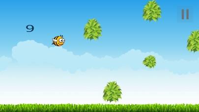 Bee Beez-2