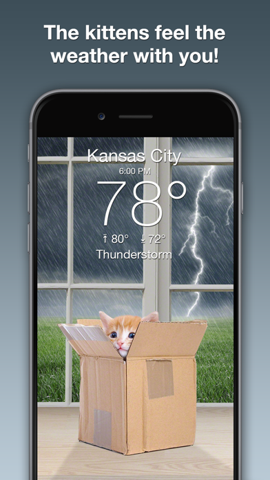 download Weather Kitty: Forecast & Cats apps 0