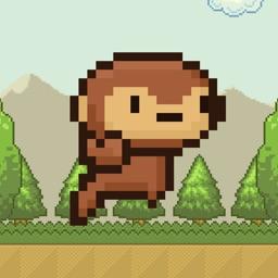 Mon Monkey