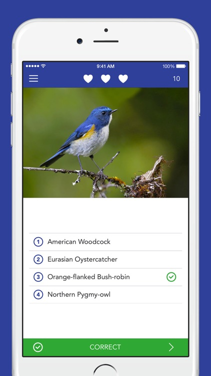 iKnow Birds PRO - USA screenshot-3
