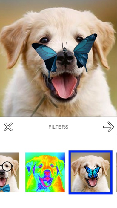 Screenshot of Puppy Magic App