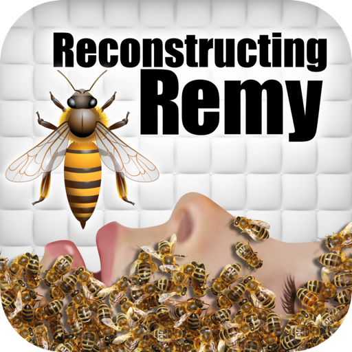 Reconstructing Remy: An Interactive Novel