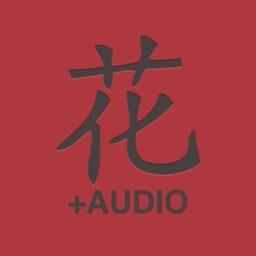 DianHua Audio Dictionary
