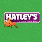 Hatleys Alloa icon