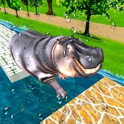 Animal Water Run