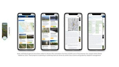 Bay Delta Live app image