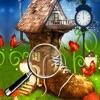 Fairy Forest Adventure