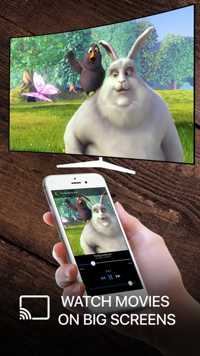 Streamer for Chromecast PRO screenshot three