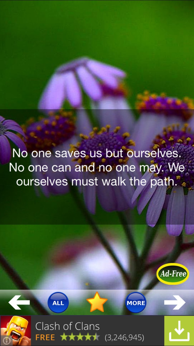 Buddha & Buddhism Quotes 500! Screenshot