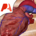 Pocket Heart - インタラクティブ心臓学