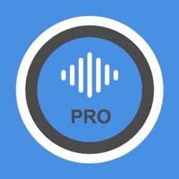 Voice HD recorder - pro