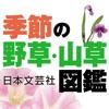 季節の野草・山草図鑑 - iPhoneアプリ