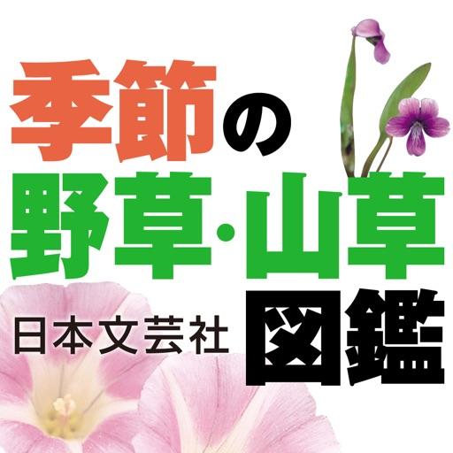 季節の野草・山草図鑑