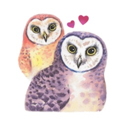 Watercolor Talking Owls Sticker