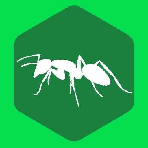 蚂蚁跑步-让朋友监督你运动