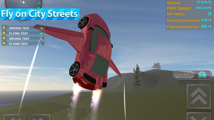 Flying Sports Car Driver