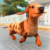 My Pet Escape: Rescue the Dog!