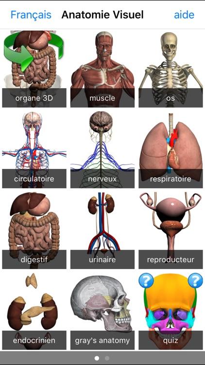 Anatomie Visuel