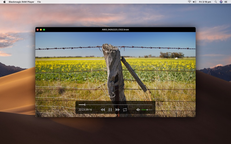 Blackmagic RAW Player Screenshot