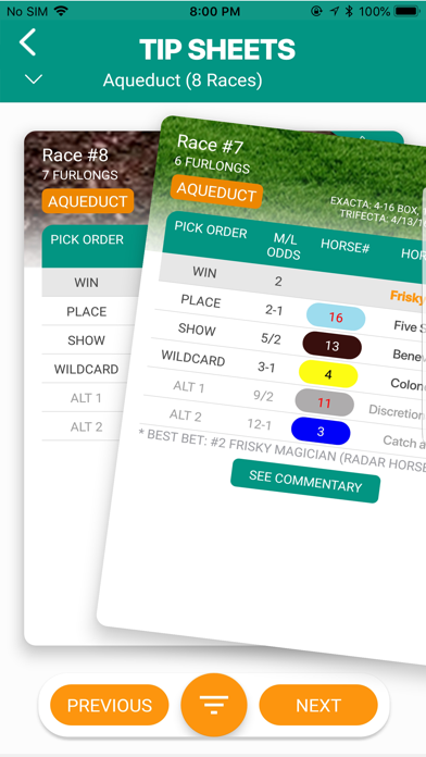 Horse Racing Tip Sheets Screenshot