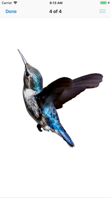 My Hummingbird Stickers screenshot-6