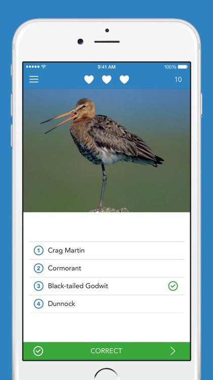 iKnow Birds 2 PRO - Europe screenshot-3