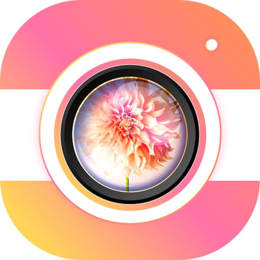 PIP CAM - Photo Maker
