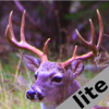 Deer Calls & Sounds lite