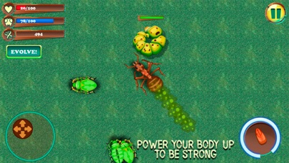 Ant City Colony Evolution screenshot three