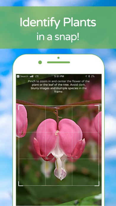 download PlantSnap Plant Identification apps 3