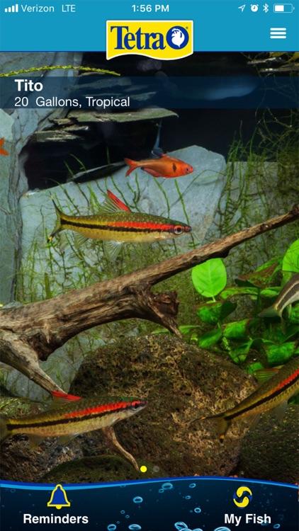Tetra My Aquarium