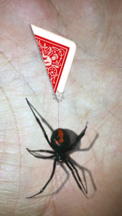 Magic Spider - My Pet... screenshot1