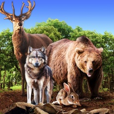 Activities of Wild Animals Clan Simulator 3D