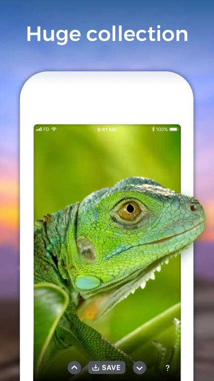 Live Wallpaper Animated Themes screenshot-2