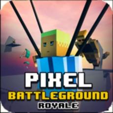 Activities of Pixel Battle Royale Ground Gun