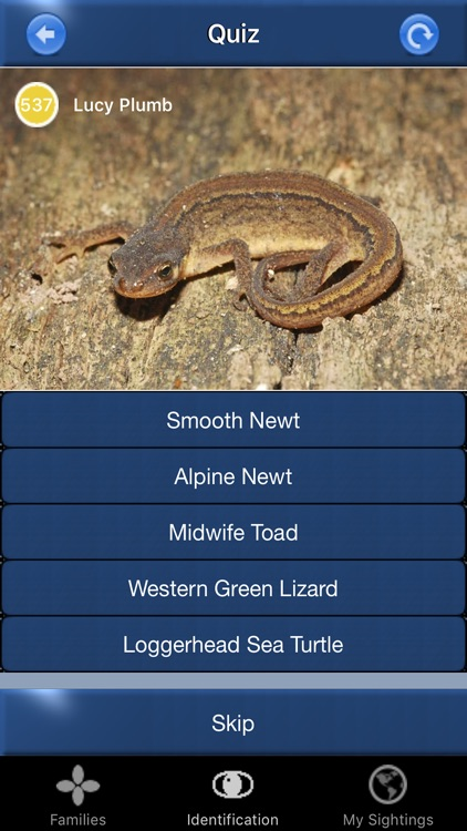 Reptile Id - UK Field Guide screenshot-3