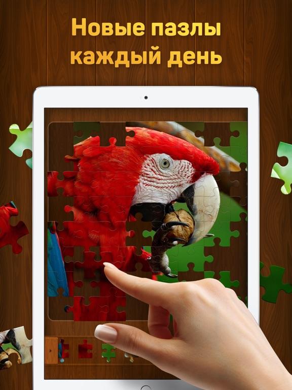 Пазлы и головоломки Скриншоты7