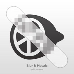 Blur & Mosaic  [plus]
