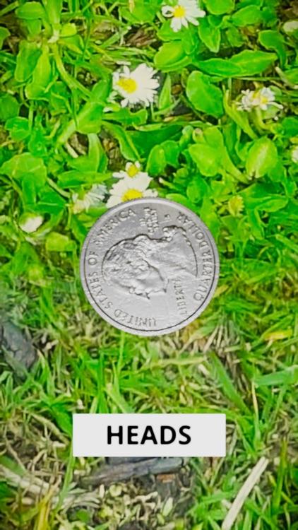 3D Coin Toss screenshot-3