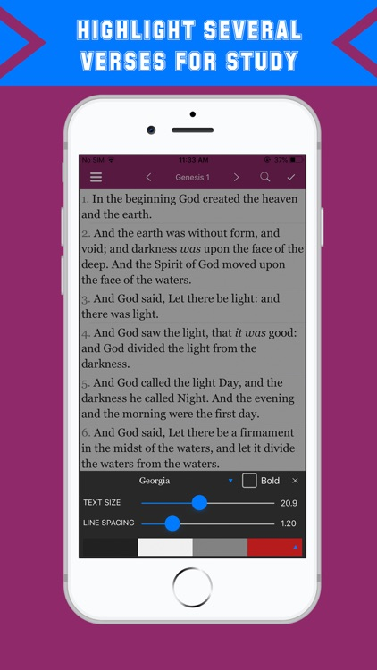 King James Bible - Dramatized screenshot-6