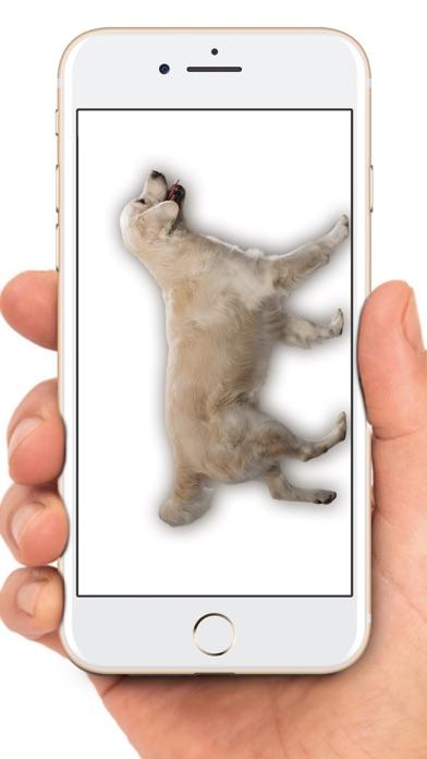 Maus auf dem Bildschirm WitzScreenshot von 5