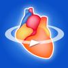 冠動脈3Dアトラス