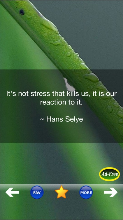 Stress Relief & Management App